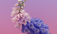 The Entirety Of Flume's Skin Is Now Available To Stream