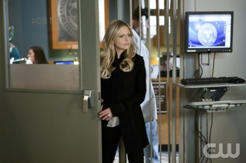 Ringer Season 1-18 'That Woman's Never Been A Victim Her Entire Life' Recap