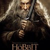 1399175 589981794370763 603149722 o 100x100 The Hobbit: The Desolation Of Smaug Gallery
