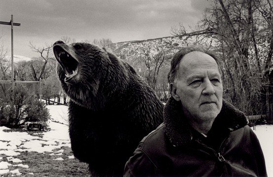 2005 grizzly ma 554x360 Best Films Of The Decade (2001 2010)