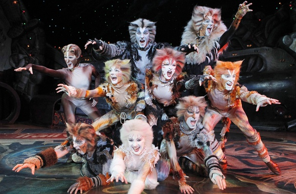 Tom Hooper Will Bring The Jellicle Cats Out To Play For Feature Adaptation