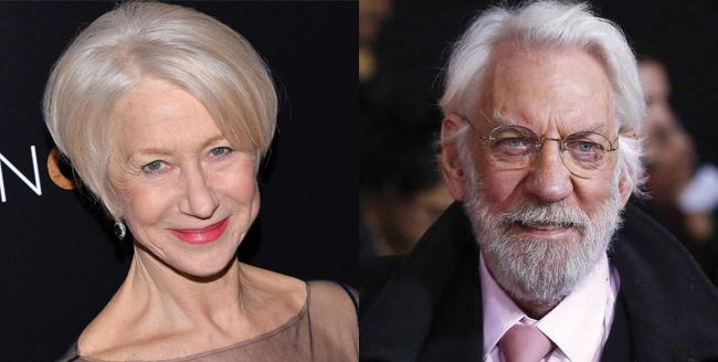 Helen Mirren And Donald Sutherland In For Notebook-Esque Drama The Leisure Seeker