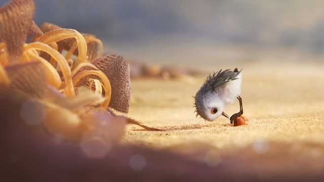 Pixar Short Piper Will Take Flight Before Finding Dory