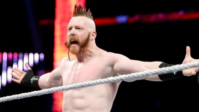 WWE Superstar And Teenage Mutant Ninja Turtles Actor Sheamus Hopes To Play Venom