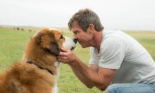 PETA Calls For Boycott Of A Dog's Purpose As Producer Responds To German Shepherd Video