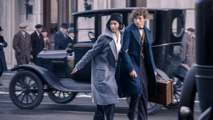 Zoe Kravitz Enlists For Fantastic Beasts And Where To Find Them