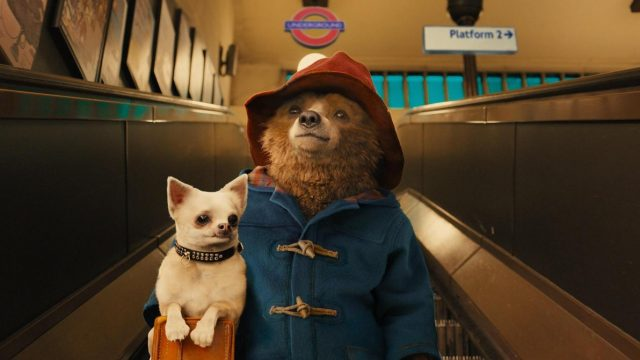 Paddington 2 Casts Hugh Grant And Brendan Gleeson As Production Gets Underway