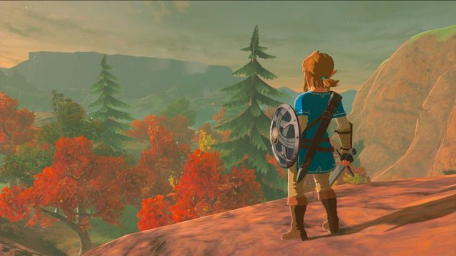 Link Gazes Out Over Hyrule In New The Legend of Zelda: Breath Of The Wild Image