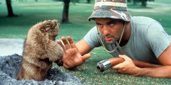 Bill Murray To Open Caddyshack-Themed Bar In Chicago