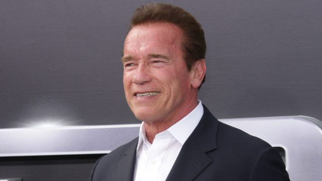 Does Arnold Schwarzenegger Have A Villainous Role In Wonder Woman?