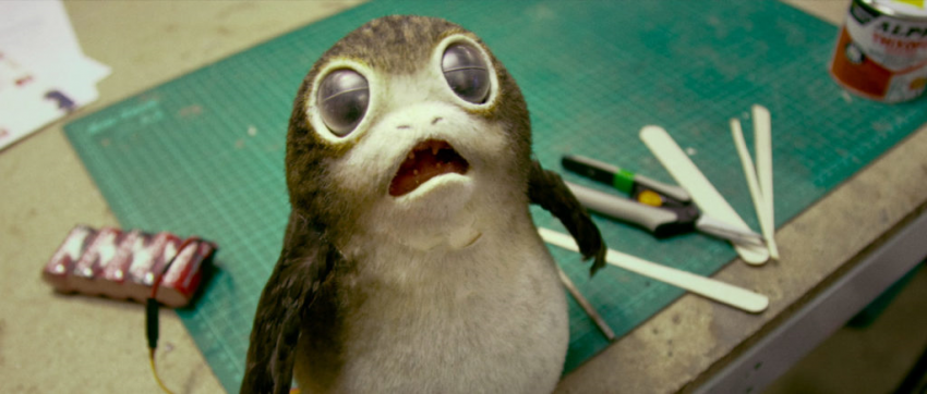 Meet The Next Fan Favourite Creature Of The Star Wars Universe