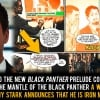 Black Panther's Been In The MCU Since Before Tony Became Iron Man
