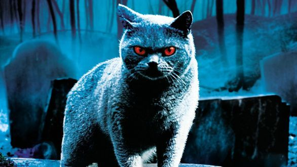 Paramount Sets 2019 Release For 'Pet Sematary' & 'Instant Family'