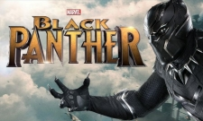 Black Panther Screenshots Offer A Play-By-Play Breakdown Of Latest Trailer