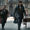 Tina Returns In Latest Pic For Fantastic Beasts: The Crimes Of Grindelwald