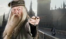 Harry Potter Fans Unhappy With J.K. Rowling's Reveal About Dumbledore's Sexuality