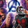 BBFC Listing Confirms Ant-Man For Avengers: Infinity War