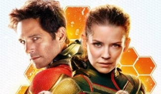 Evangeline Lilly Was Glad That The Wasp Was Cut From Captain America: Civil War