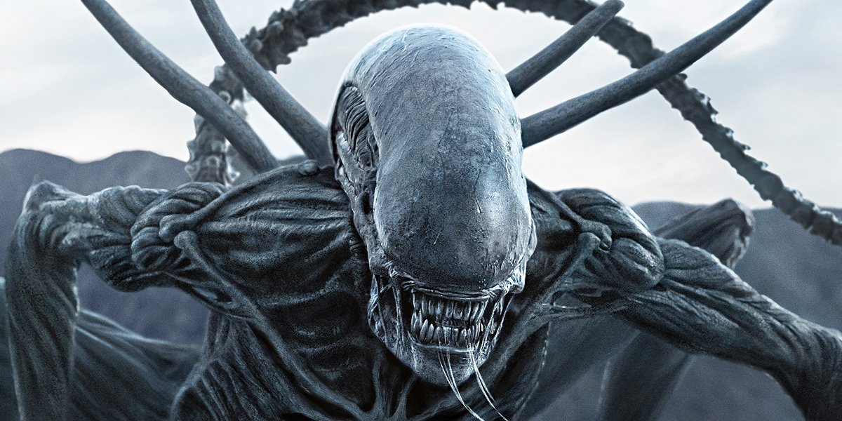 First Plot Details For Alien Reboot Tease A Loyal Xenomorph