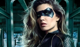Arrow Star Has Pitched A Birds Of Prey Spinoff To The CW