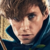 Johnny Depp Breaks The Silence On Fantastic Beasts Casting Controversy