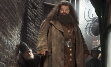 Eddie Redmayne Wants To See Hagrid In Fantastic Beasts 3
