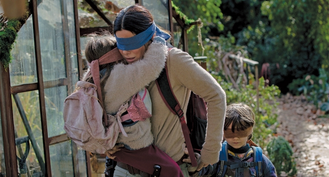 Bird Box Has Now Been Seen By 80 Million Households