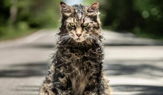 Pet Sematary Alternate Ending Is Much Sadder And Closer To Source Material