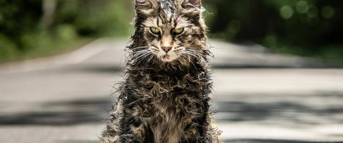 Stephen King Originally Wanted A Different Ending For Pet Sematary Remake