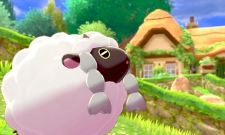 PETA Slammed By Pokémon Fans For Making Political Statement With Wooloo