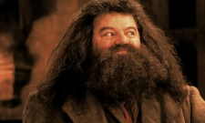 Here's What Happened To Hagrid After Harry Potter Ended