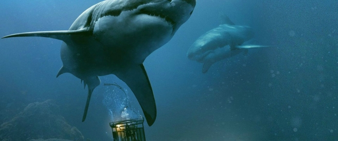 47 Meters Down: Uncaged Review