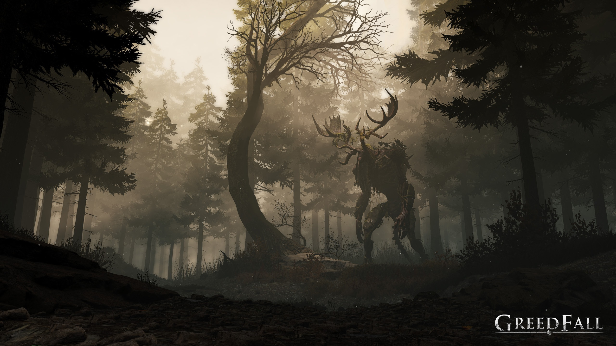 GreedFall Forest