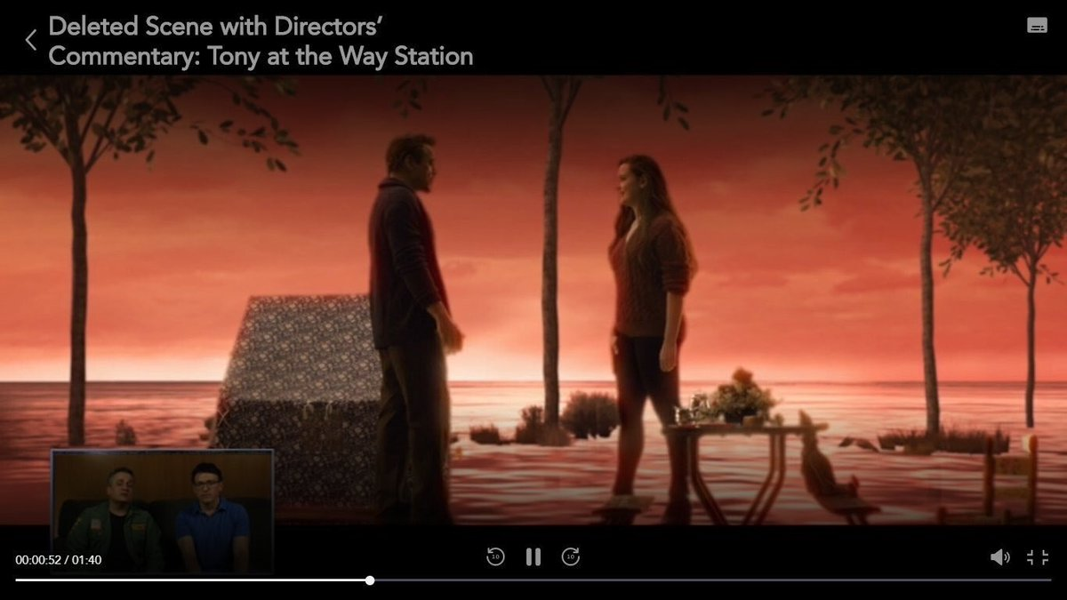 Image result for There Is A Reason Why Director's Have To Cut Tony Stark's Afterlife Scene In Avengers Endgame