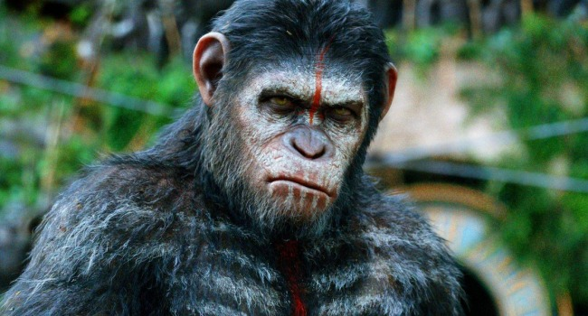 Planet Of The Apes Fans Furious About Disney Rebooting The Series
