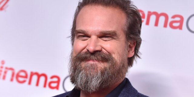 David Harbour Reportedly Getting An Extraction Spinoff