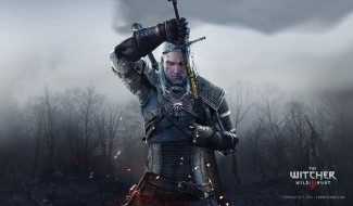 The Witcher III: Wild Hunt Gallery
