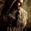 860388 589981914370751 1376016926 o 100x100 The Hobbit: The Desolation Of Smaug Gallery