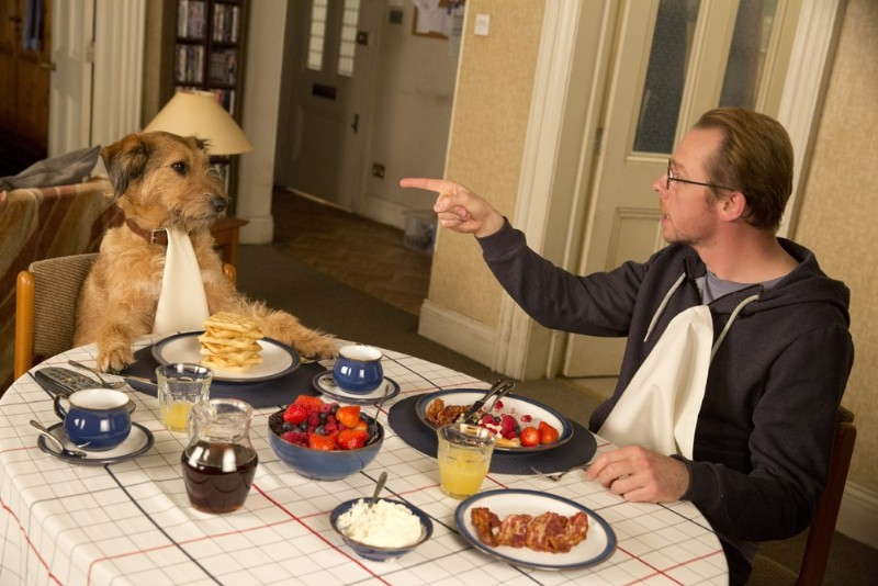 Absolutely-Anything_0