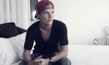 Avicii Opens Up About His Retirement And The Cost Of Fame