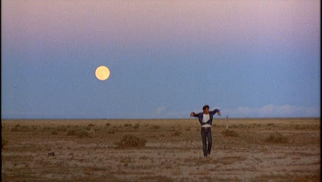 Badlands 7 Tips To Help You Like Terrence Malick Movies More, Maybe
