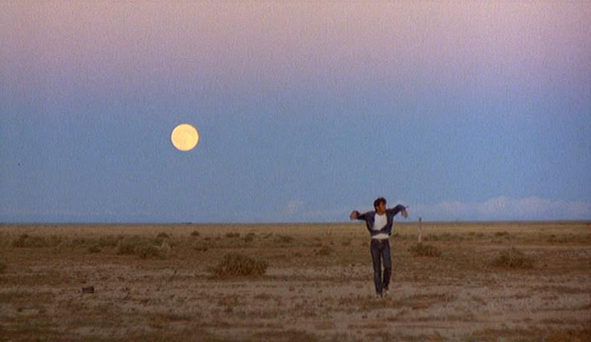 Badlands1 7 Essential Films From The 1970s