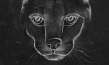 Disclosure – Caracal Review
