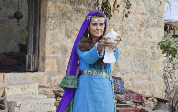 The Dovekeepers Review