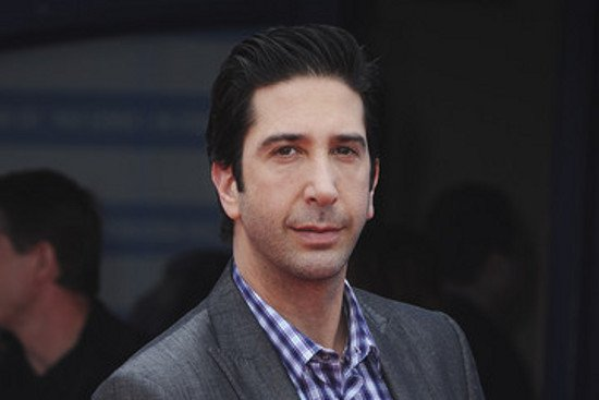 David Schwimmer Becomes A Killer For The Iceman