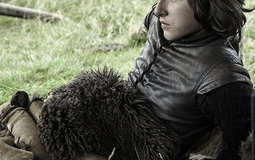 Game of Thrones Bran at Rest 510x321 Game of Thrones Releases New Images Of Its Season 3 Characters