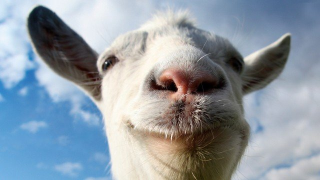 Goat Simulator Poised To Ram Onto PlayStation Platforms In August