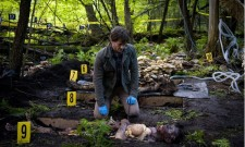 "Hannibal Review: ""Amuse-bouche"" (Season 1, Episode 2)"