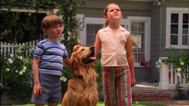 Polly the Dog in Mad Men