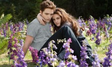 2013 Razzie Nominations Honour Twilight, Battleship And More